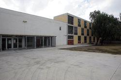 Institut Ribot i Serra