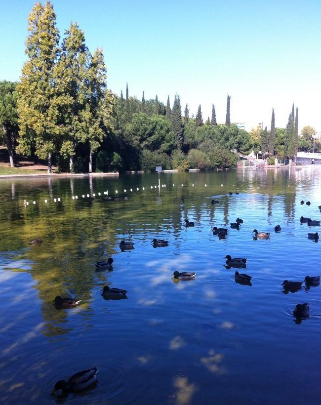 Parc de Catalunya