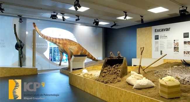 Fotografia de l'activitat VISITA GUIADA AL MUSEU DE L' ICP